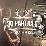 30 Particle Photoshop Brushes by Layerform Design Co