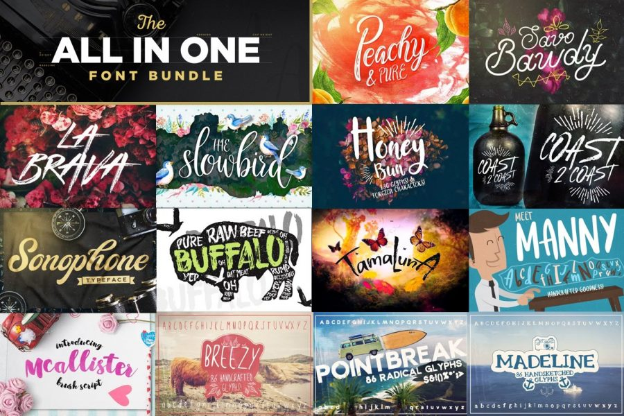 The All in One Font Bundle by Layerform Design Co