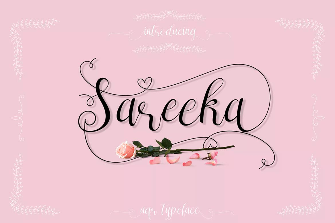 best-script-fonts-on-envato-elements-sareeka