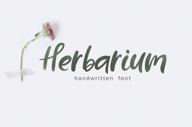 herbarium-handwriting-font